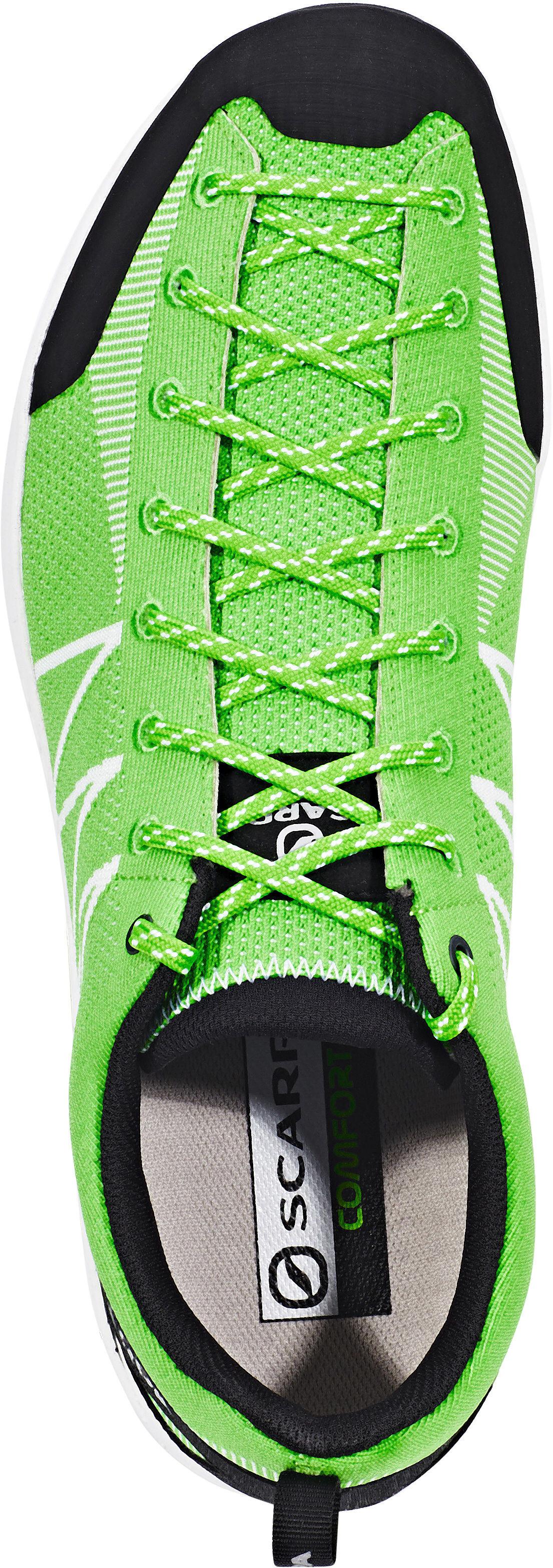 Scarpa Iguana Approach Shoe Review